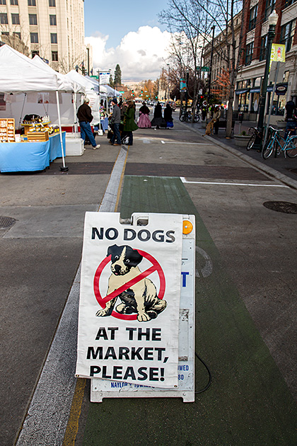 No-Dogs-Allowed-MEAN