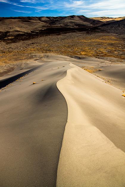 Idaho Dunes
