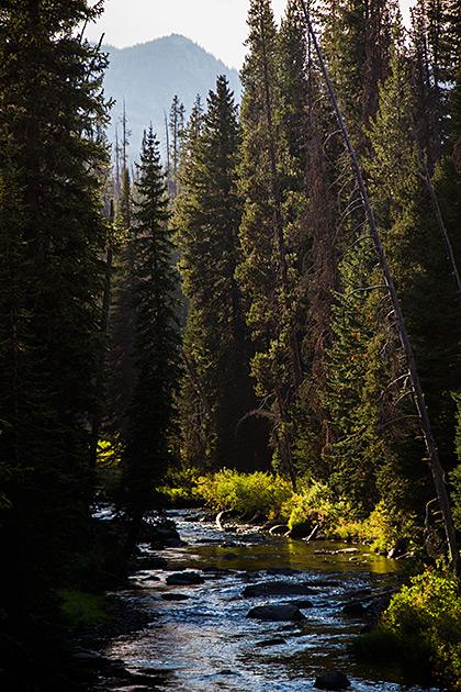 Idaho-Fall