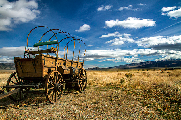 Sattler-Wagon