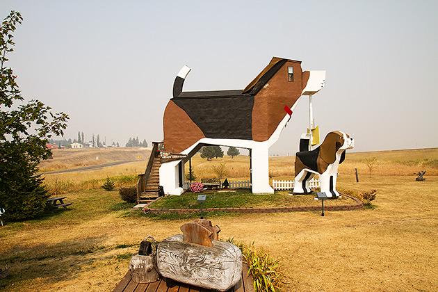Dog-Bark-Park