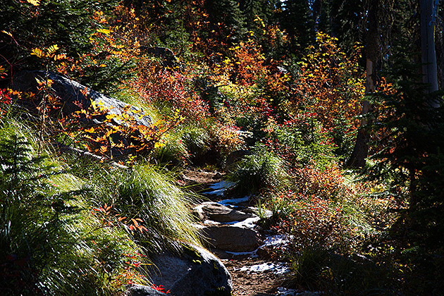 Fall Hike Idaho