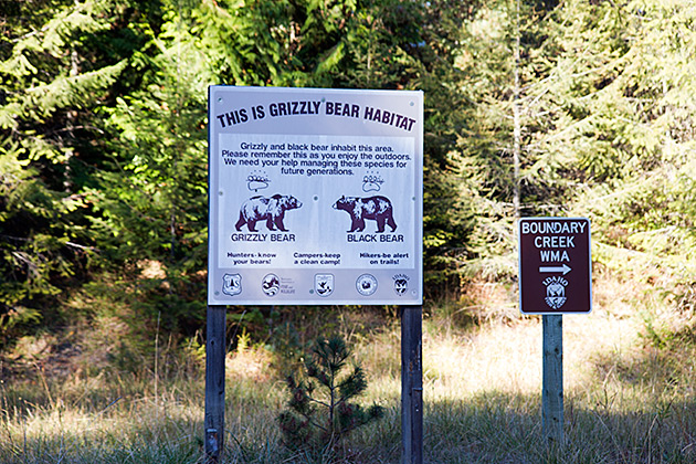 Grizzly-Bear-Habitat