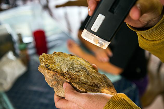 Gold-Ore-Idaho