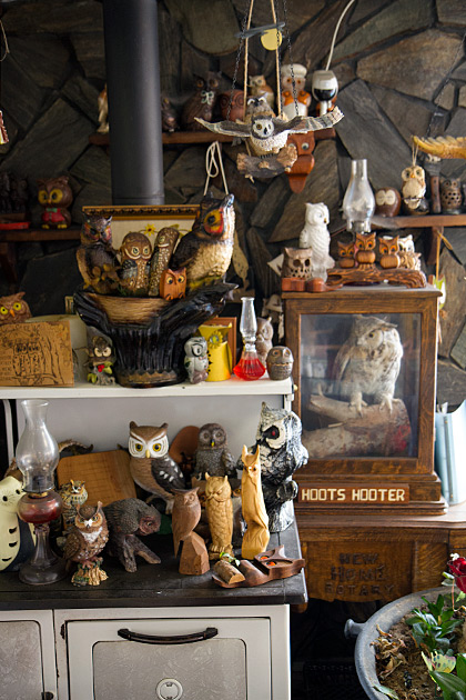 Hooter Collection