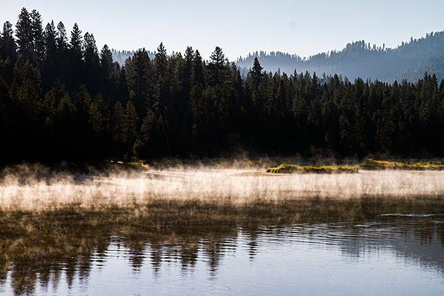 Morning-Mist