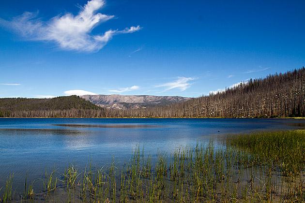 Beautiful-Loon-Lake