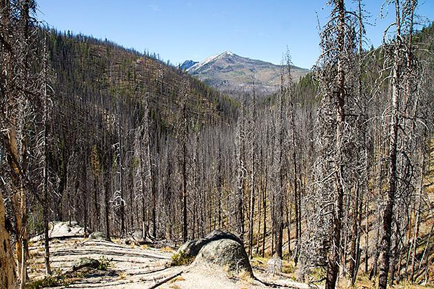 Bizarre-Landscape-Idaho