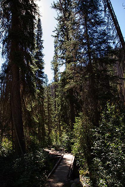 Idaho-Grimm-Stories