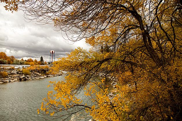 Fall-In-Idaho