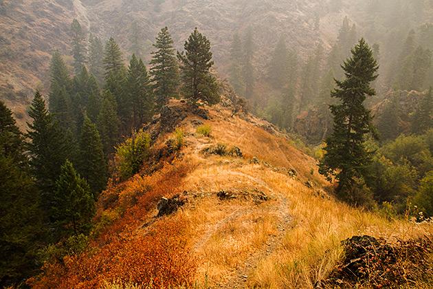 Mixed Colors Idaho
