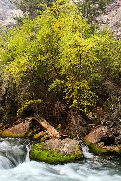 Mother Nature Idaho