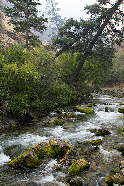 Rapid-River