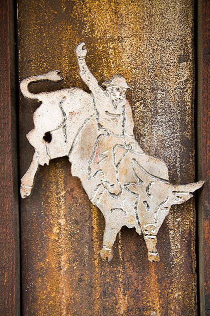 Bull Rider Riggins