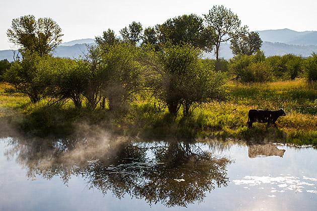 Steamy-Landscape-Idaho