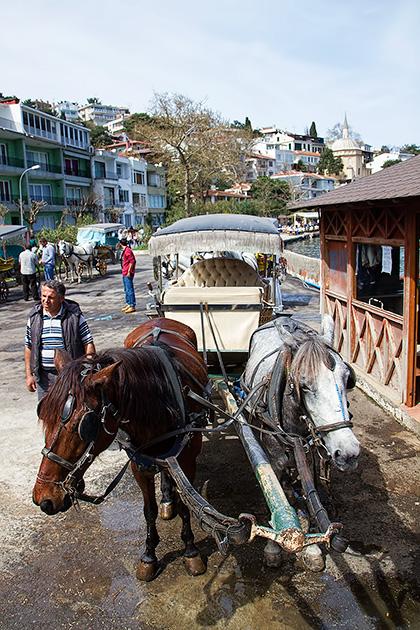 Turkey-Horse-Tour
