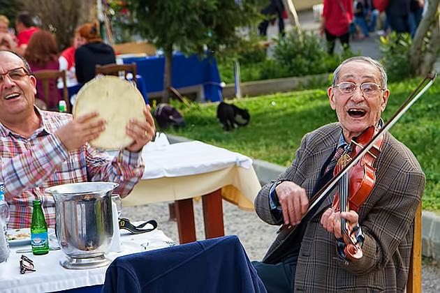 Turkish-Fiddle