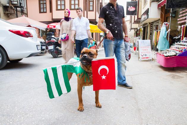 Bursa Soccer Fan Dog