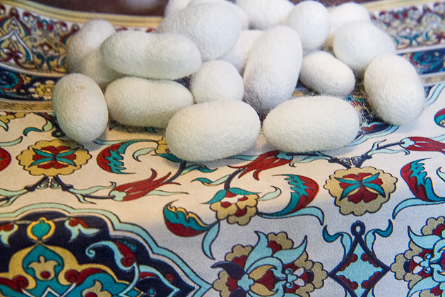Cocoons Bursa