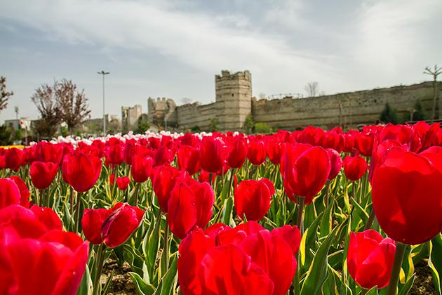 Spring-In-Istanbul