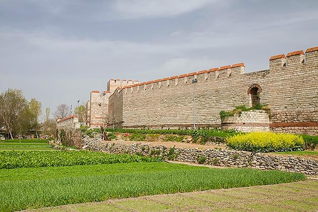 Vegetable Garden Istanbul