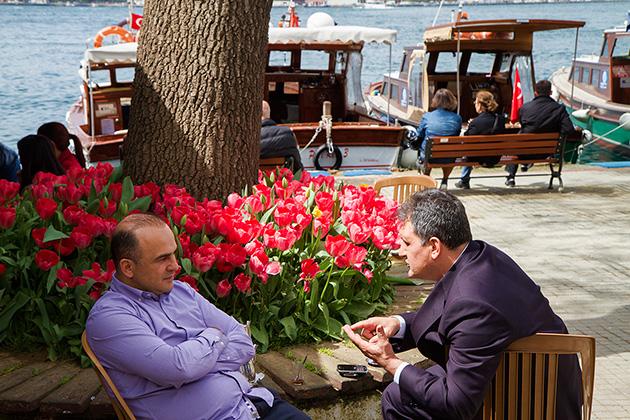 Tulip-Business-Talk