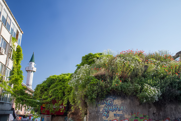 Green Grass Roof Istanbul