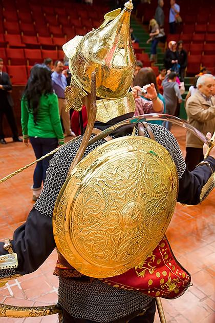 Turkish-Golden-Shield