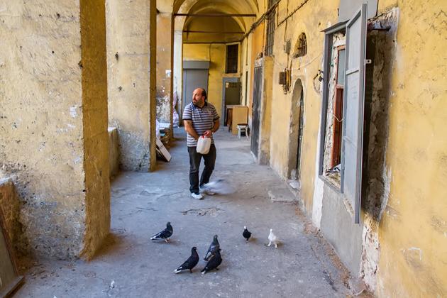 Feeding Pigeons Istanbul