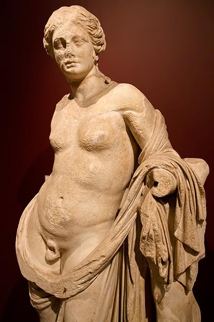 Hermaphrodite-Istanbul