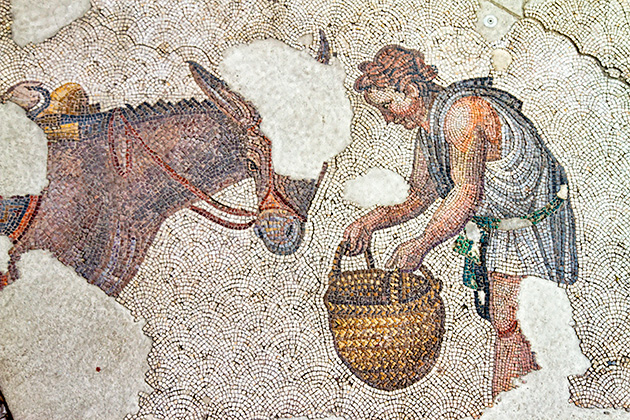 Feeding Donkey Mosaic