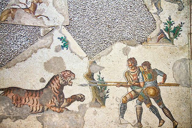 Tiger-Mosaic