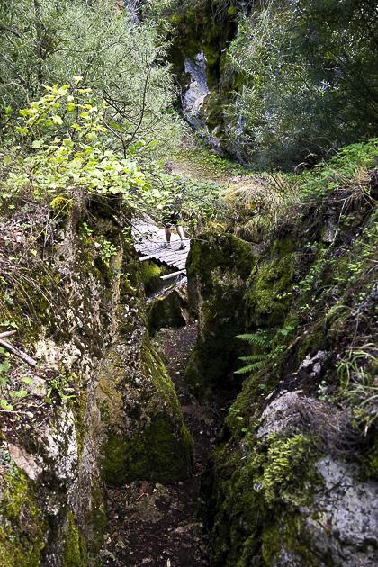 Gari and the Deer Leap Bridge