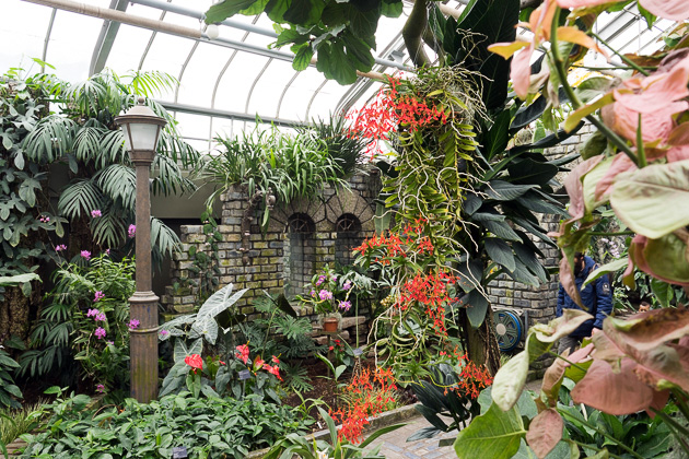 Greenhouse and Butterflies