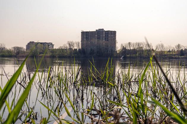 Parc de Rapides Montreal