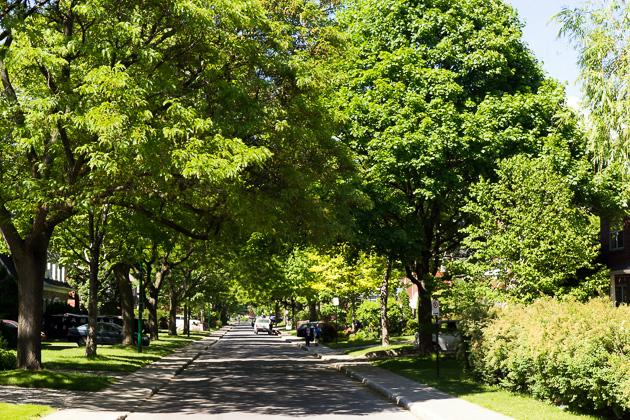 Town Mont Royal