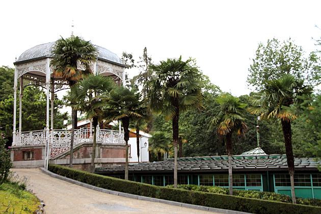 Oviedo Palms