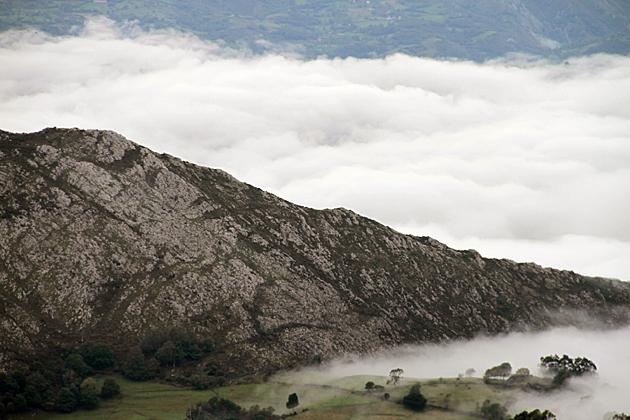 Fog Asturias