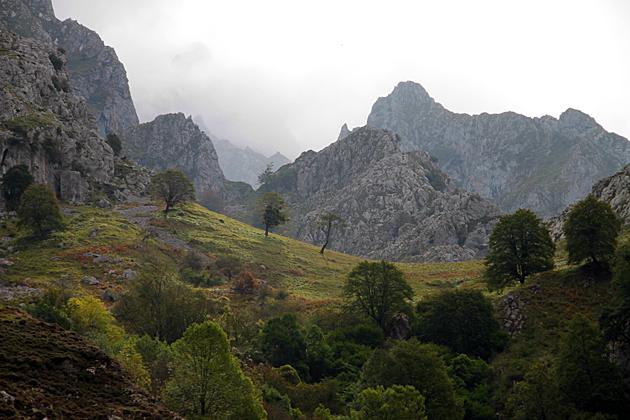 Fall Asturias
