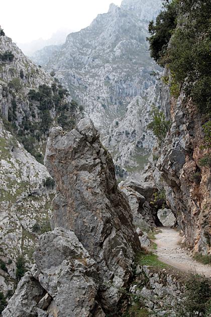 Hiking Routes Picos