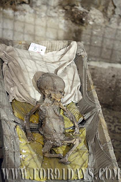 Alien Baby Mummy