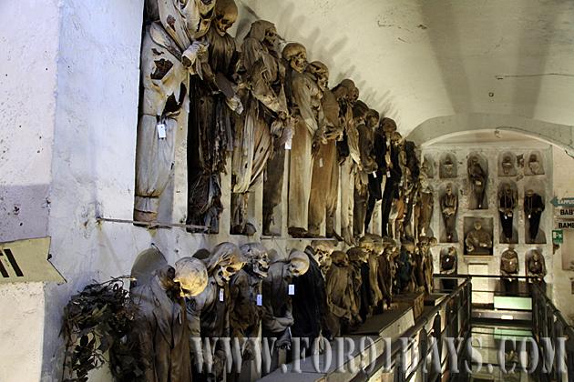 Scary Tour Palermo