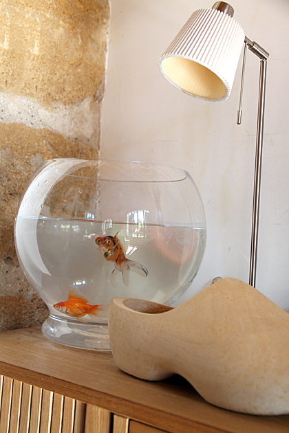 Fish  Bowl Palermo Sicily