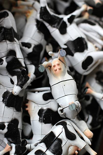 Cow Orgy