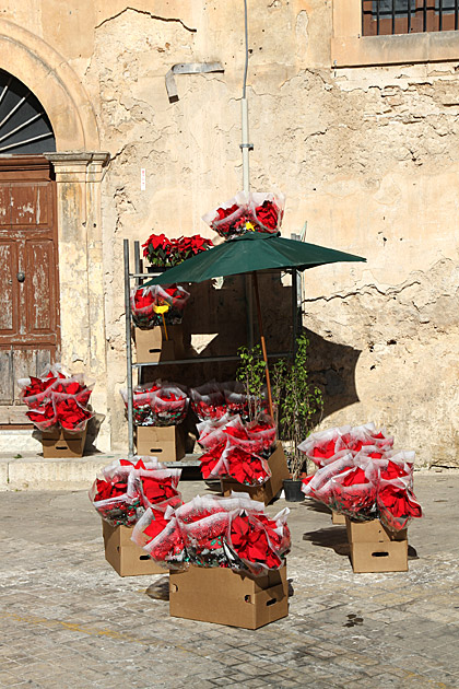 Christmas Palermo