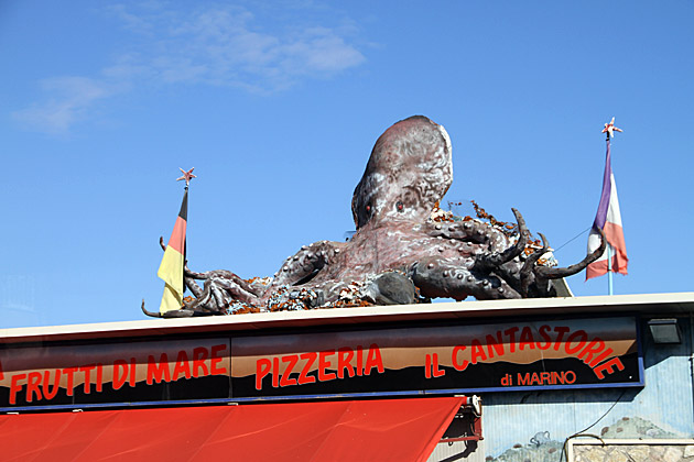 Octopus Palermo