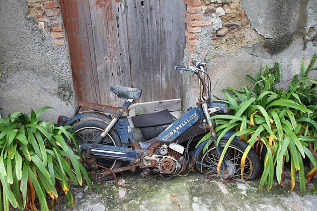 Trashed Moped