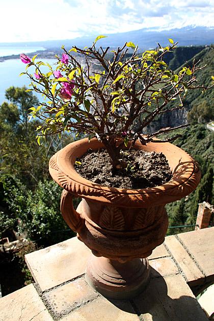 Pottery-Taormina