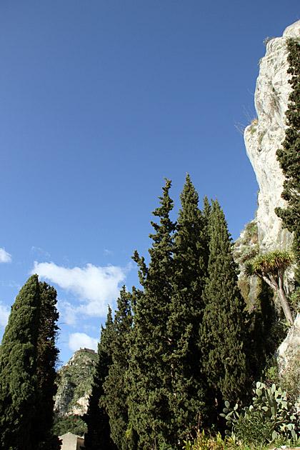 Tress Rocks Sicily