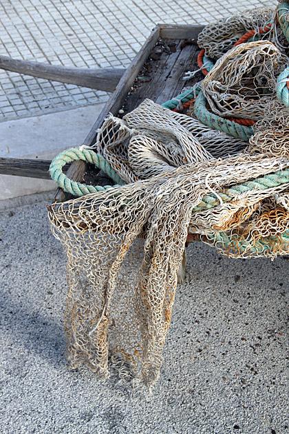 Fisther Net